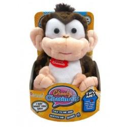 Prieten chatimals obraznicel maimuta